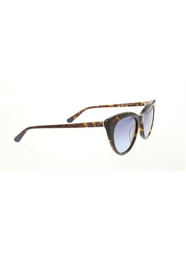 Gant  Gnt 8068 52W Kadın Güneş Gözlüğü Kahve
